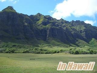 Hawaii_001_320240