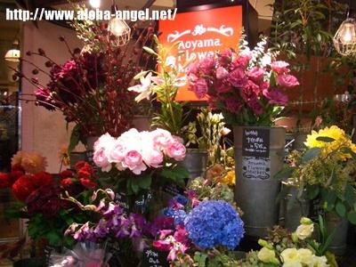 2009_10_flower