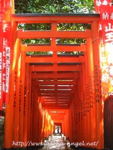 2010_02akasaka