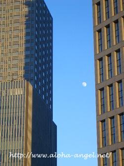 2010_1218_moon01_2