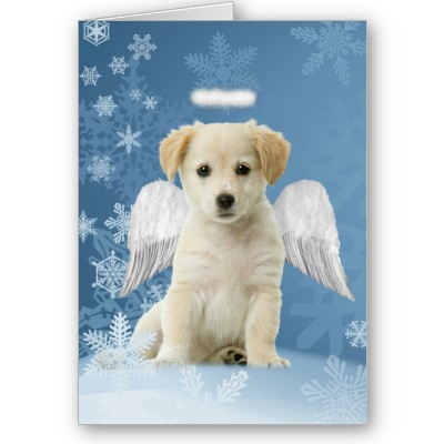 Angel_puppy_christmas_card